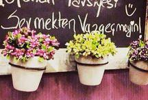 Sevmekten vazgeçmeyin!  / Haftanın son iş gününde size tavsiyemiz; ' sevmekten vazgeçmeyin! '  #escicekcom #esçiçek #çokyakında #sayılıgünler #çiçeğinyeniesintisi #çiçektasarım
