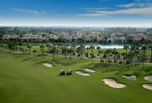 Chandler Golf / Love to golf? Chandler has tons of breathtaking golf courses to take advantage of. #GolfCourses #Golfing