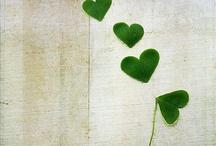 LOVE / by jackie smyth