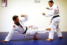 Jiu Jitsu, (БЖЖ), грепплинг