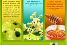Jiwadaya Netraprabha / Therapeutic Properties of Few Ingredients Present in Jiwadaya Netraprabha. http://www.herbsatwork.com/