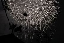 japanese fire work 2014 end of summer / traditional art   end of summer in Japan
