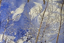 Micheal Zarowsky Fine Art