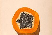 colour: naranja