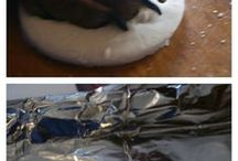 Cane fatto in casa