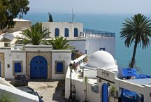 COUANTRIES  _ TUNISIA