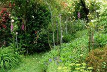Gardening / by Jody Cromwell