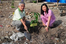 Planting trees in preschool, Vietnam / Planting Trees Day: this event by Aide et Action International aimed at raising awareness of parents, children, local communities and staff of Nha Trang Novotel regarding environmental protection in schools and communities.