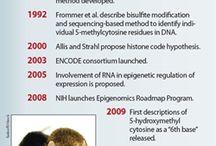 epigenetik t@rihi