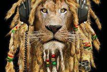 Camisetas de Bob Marley