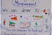 Kindergarten Vocabulary / A collection of vocabulary worksheets for preschool and kindergarten kids.