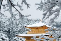 Kyoto京都 / Janvier 2015