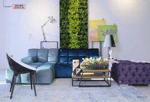 Фито дизайн / Дизайн интерьера с использованием фито стен, озеленение под ключ, сопутствующий уход за растениями