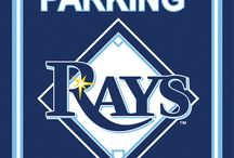 MLB - Tampa Bay Rays Tailgating Gear, Fan Cave Decor, Car Accessories / Find the latest Tampa Bay Rays Tailgating Accessories, Decor for your MLB Fan Cave, and Automotive Fan Gear for your car or truck