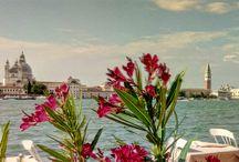 In una laguna di inizio estate, Venezia...