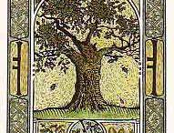 TMC Class - Tree Magick