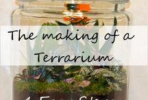 Terrerium
