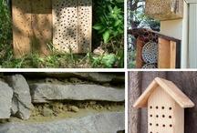 domeček pro hmyz