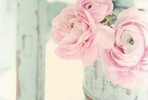 Beautiful photographs.......