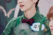 Luhan • Exo