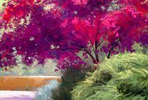 Alizarin Crimson tree
