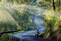 Vietnam Trip Guides / All about travel to Vietnam, Tips and guides.