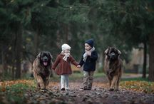 Pictures whit dogs