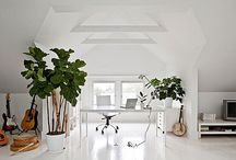 Houseplant trends / by Magnolia & Twig
