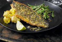Koffer & Sea Bream Recipes