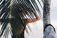 •PalmTrees