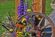Western Flower Arrangements