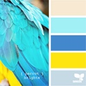 Colours / by Emma Betson