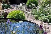 Vand i haven / Vand i haven i form af en vandsten, vandtrug, bæk eller sø tilføjer haven et meditativt islæt, der kan virke afstressende og dermed energigivende.