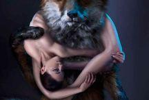 Anti Fur Campaigns
