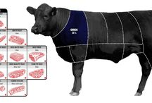 Beef Cuts / Cuts of beef illustrated and explained
