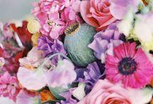 just beautiful / by Rosemary Thibeau