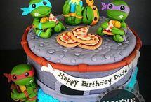 dort želvy ninja