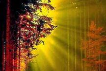 keltainen, punainen ja kulta