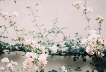 Seasonal Floral Design
