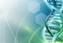 Genealogy & DNA