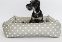 Dog Lovers Must Haves