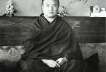 The truthseek / buddhism,dharma,happiness,joy,truth,way,16 karmapa,lama ole,17 karmapa