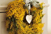 Wreaths / Ghirlande