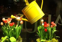Merchandising: Spring-Summer Displays