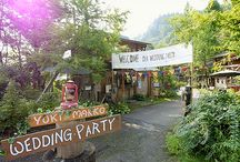 新潟マイキャンプウェディング / アウトドアの楽しさを伝えたい!手作りのログハウス村でキャンプウェディング!