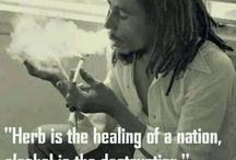 Weed -Herb of healing nation