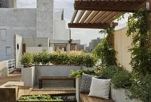 deck/verandah