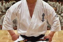 極真空手 kyokushin