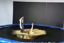 Gimnastyka na trampolinie