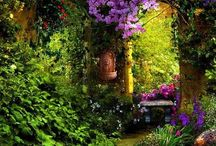 Garden flowers exterior